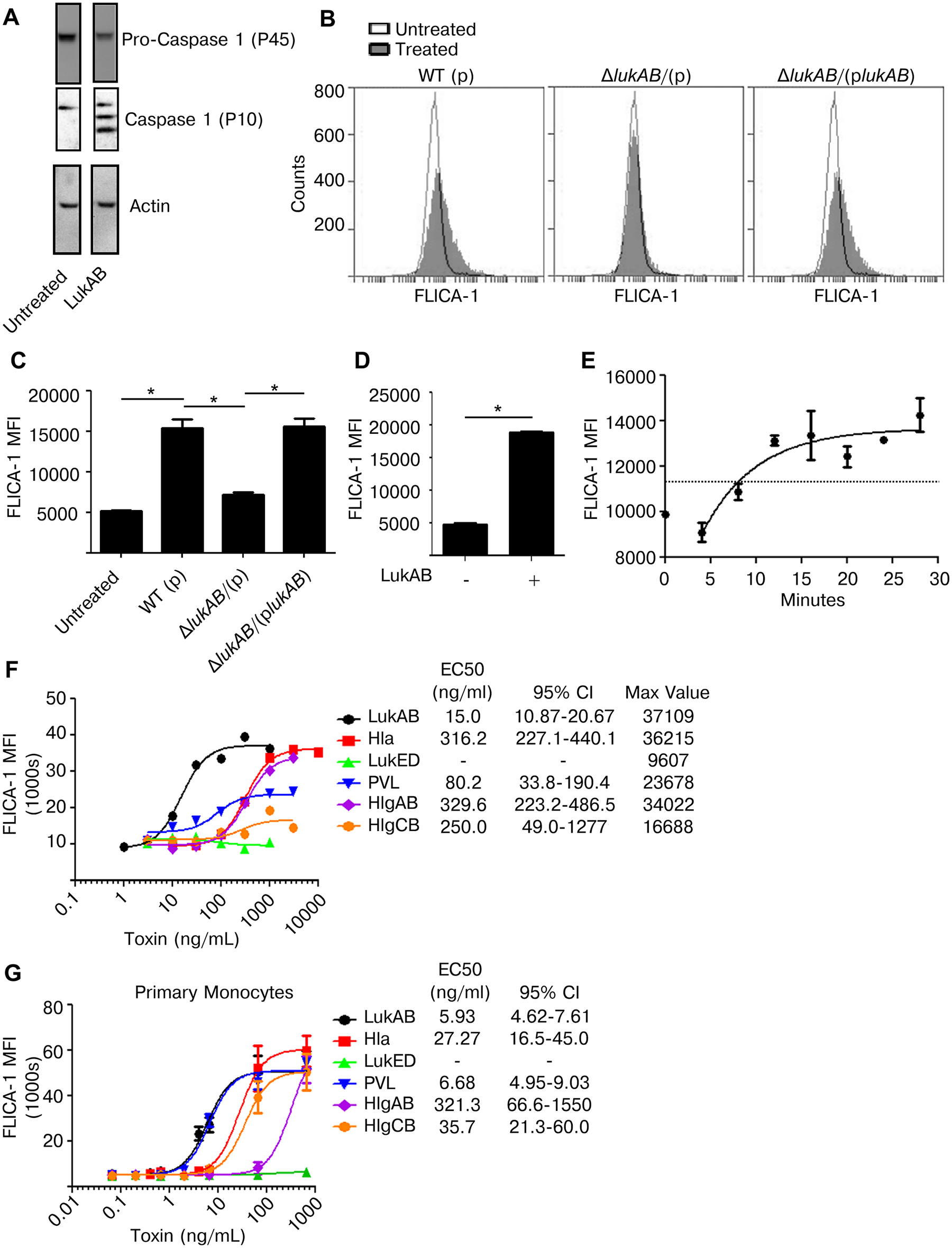 LukAB is a potent activator of Caspase 1.