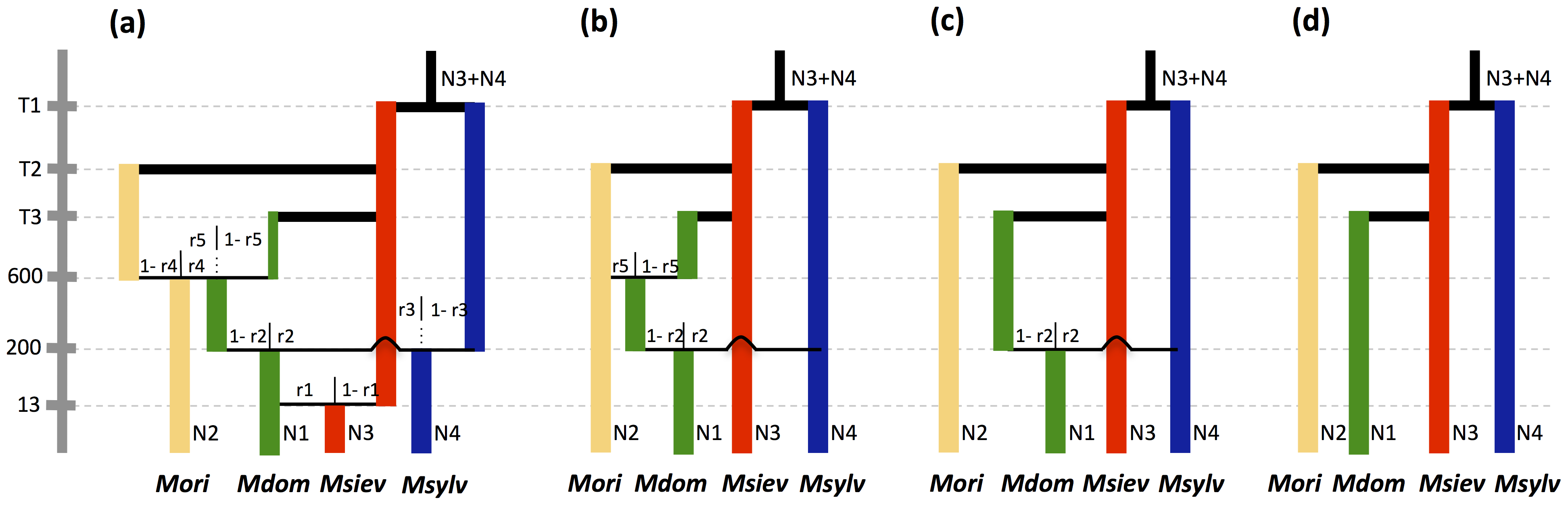 Admixture models compared in approximate Bayesian computations.