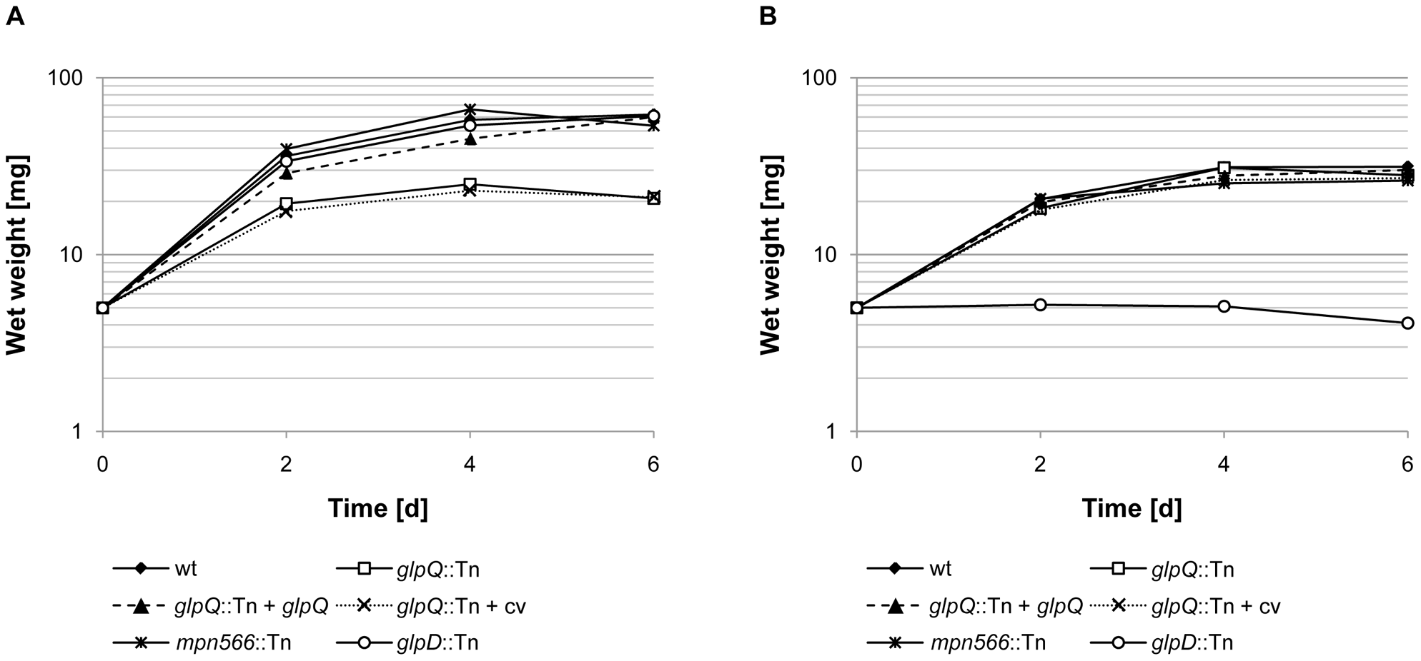 Growth of <i>M. pneumoniae</i> in modified Hayflick medium containing different carbon sources.