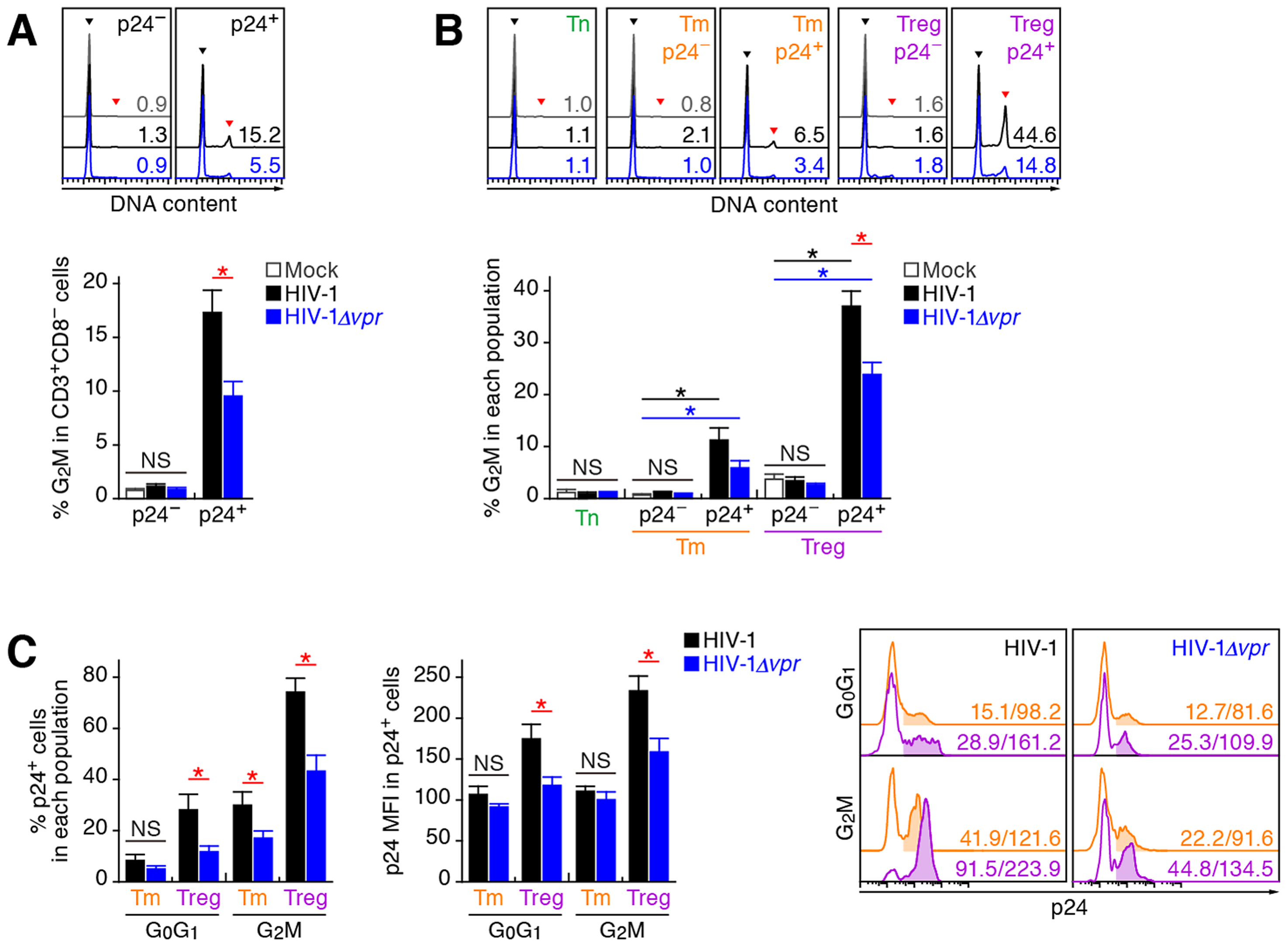 Effect of Vpr on G<sub>2</sub> cell cycle arrest in infected humanized mice.