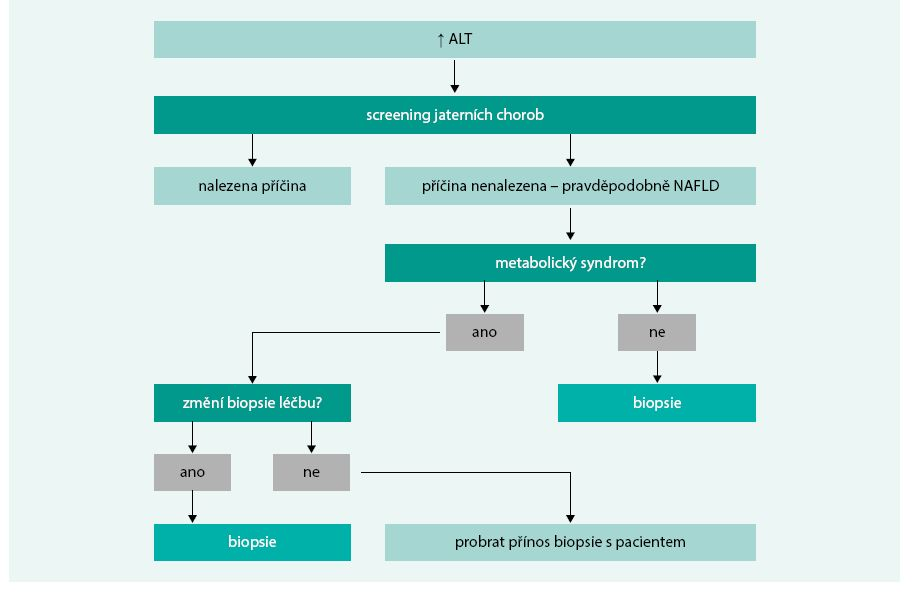 Schéma 4. Postavení jaterní biopsie v diagnostice NAFLD