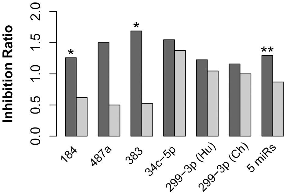 miRNA with human-specific expression showed negative association with expression of their target genes on the human evolutionary lineage.