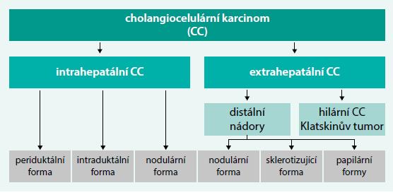 Schéma 1. Rozdělení cholangiocelulárního karcinomu dle typu a topografie