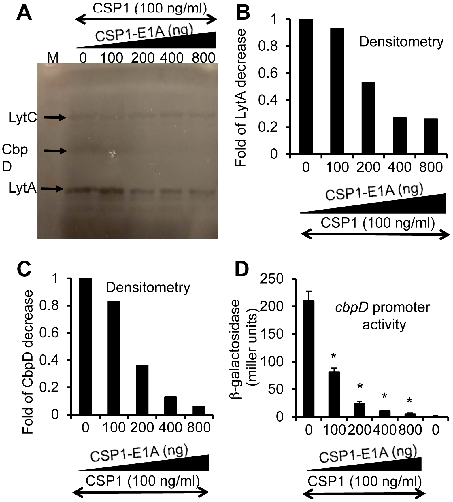 CSP1-E1A inhibits the expression of competence regulated virulence factors LytA and CbpD <i>in vitro</i>.