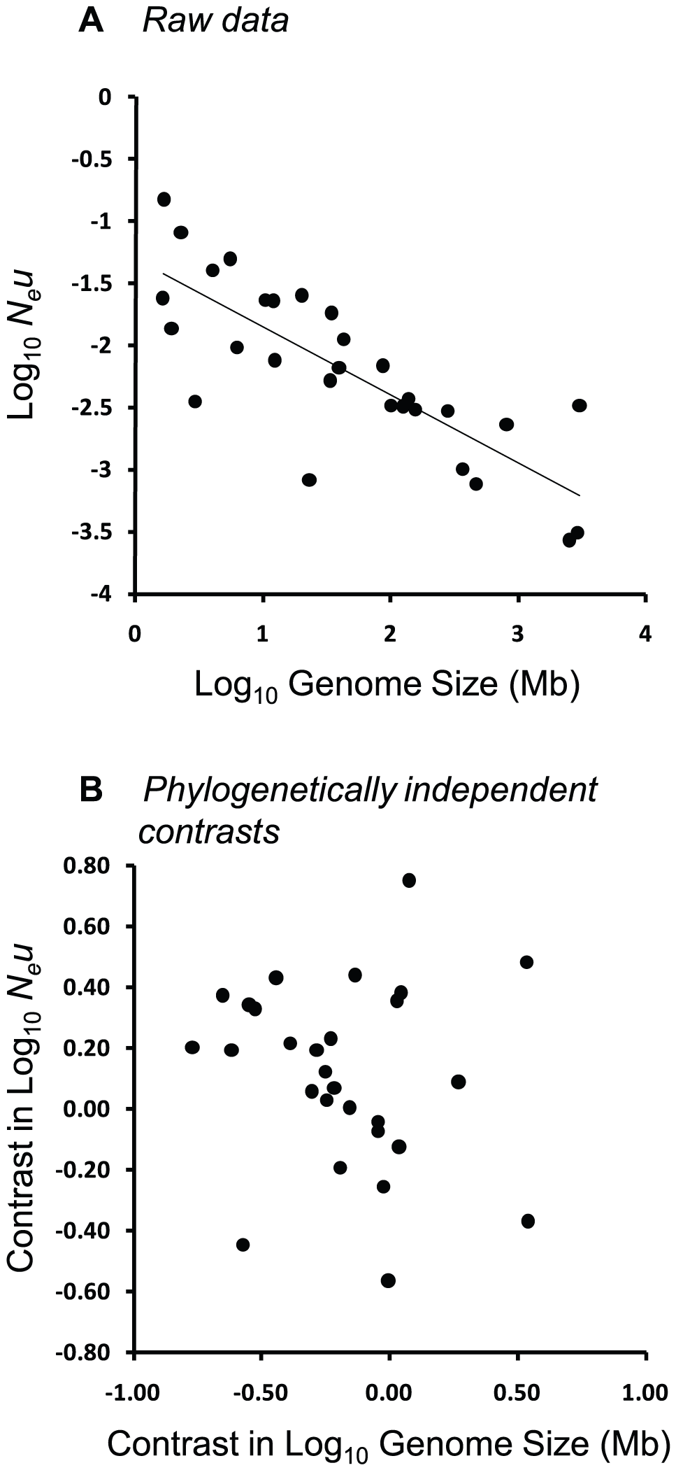 Relationship between <i>N<sub>e</sub>u</i> and genome size across 22 eukaryotic and 7 prokaryotic species from the dataset of Lynch &amp; Conery <em class=&quot;ref&quot;>[<b>7</b>]</em>.