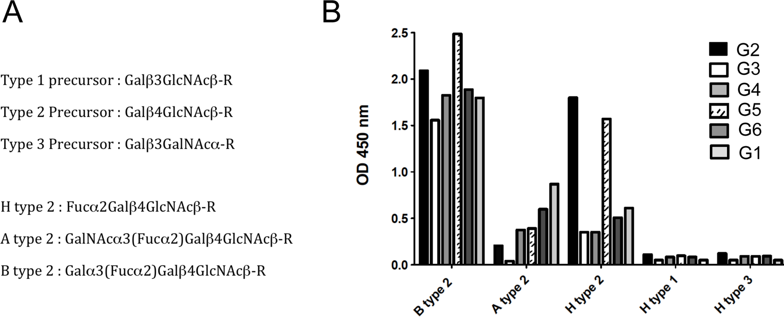 Binding of RHDV strains to immobilized synthetic oligosaccharides.