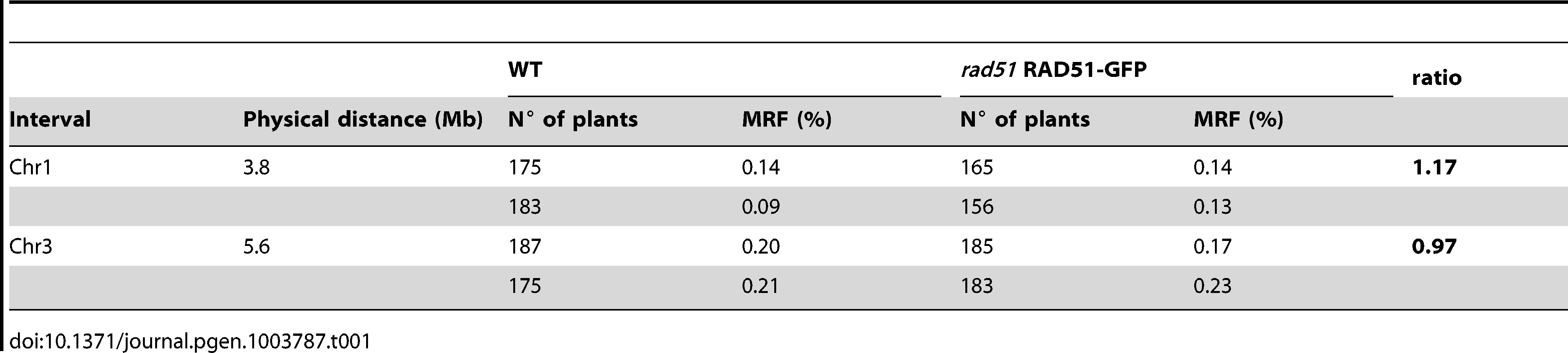 Meiotic recombination frequency (MRF) in WT and <i>rad51</i> RAD51-GFP mutant calculated from analyses of INDEL markers in F2 hybrids.