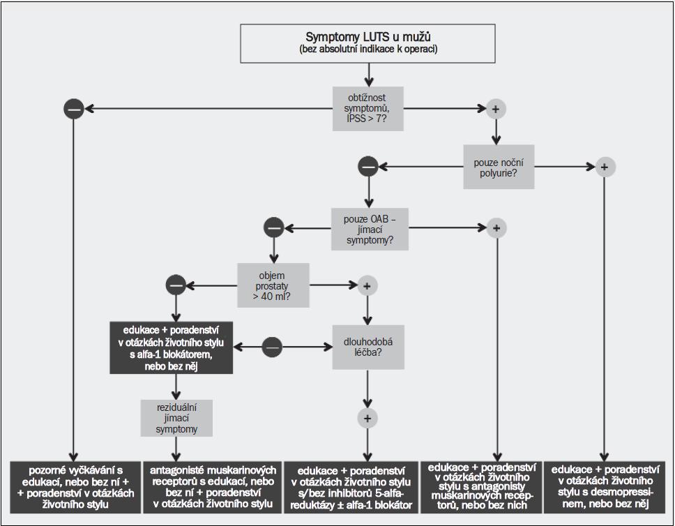 Schéma 3. Algoritmus pro léčbu symptomů dolních cest močových (LUTS) u mužů s využitím medikamentózních a/nebo konzervativních možností léčby. Rozhodnutí o typu léčby závisí na výsledcích počátečního hodnocení (◊). Mínus (–) znamená absenci a plus (+) přítomnost daného stavu.