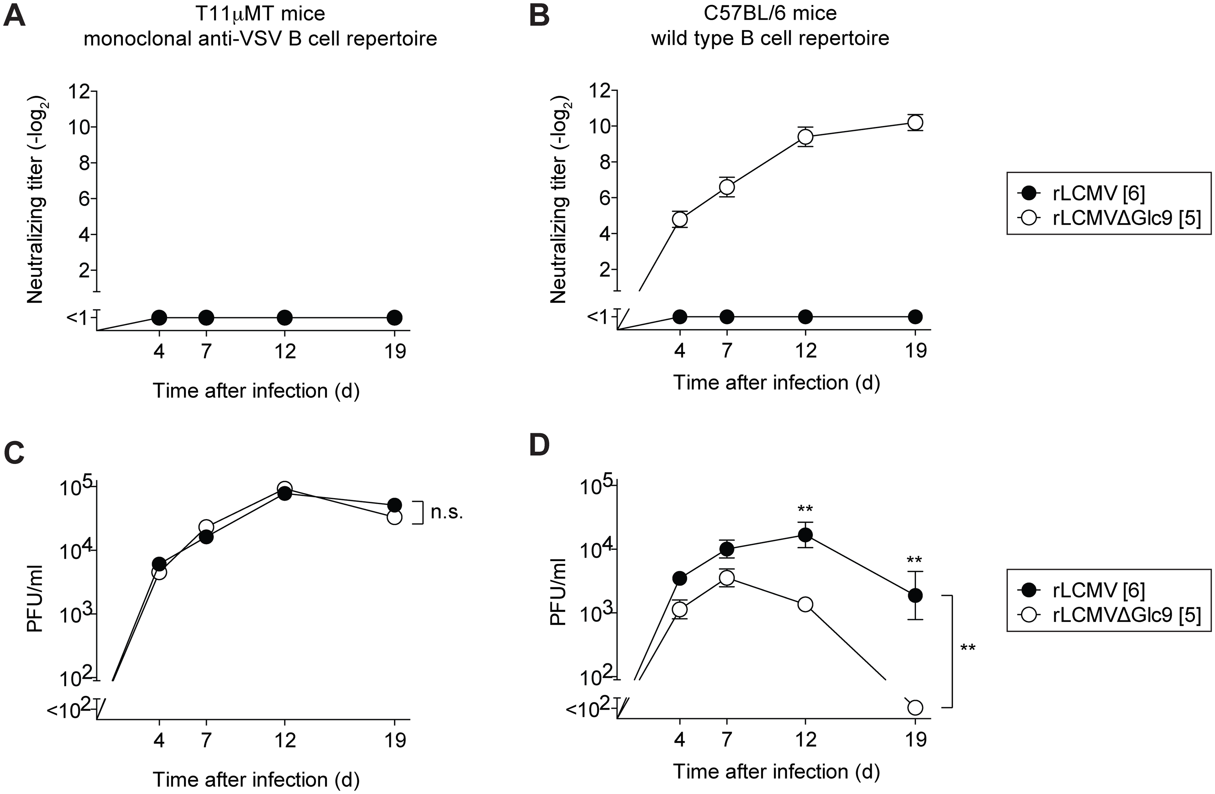 Glc9-mediated nAb evasion promotes protracted LCMV infection in mice.