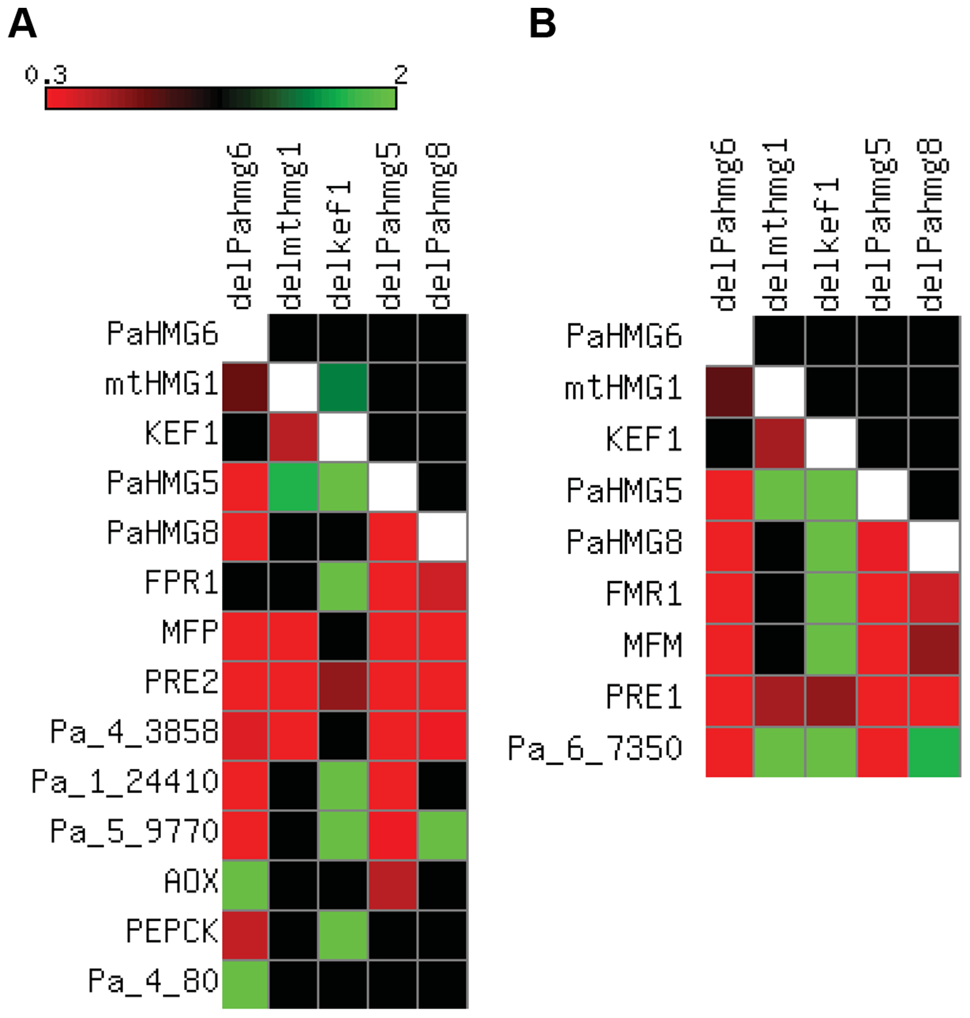Expression of HMG-box genes and mating-type target genes in strains with HMG-box gene deletion.