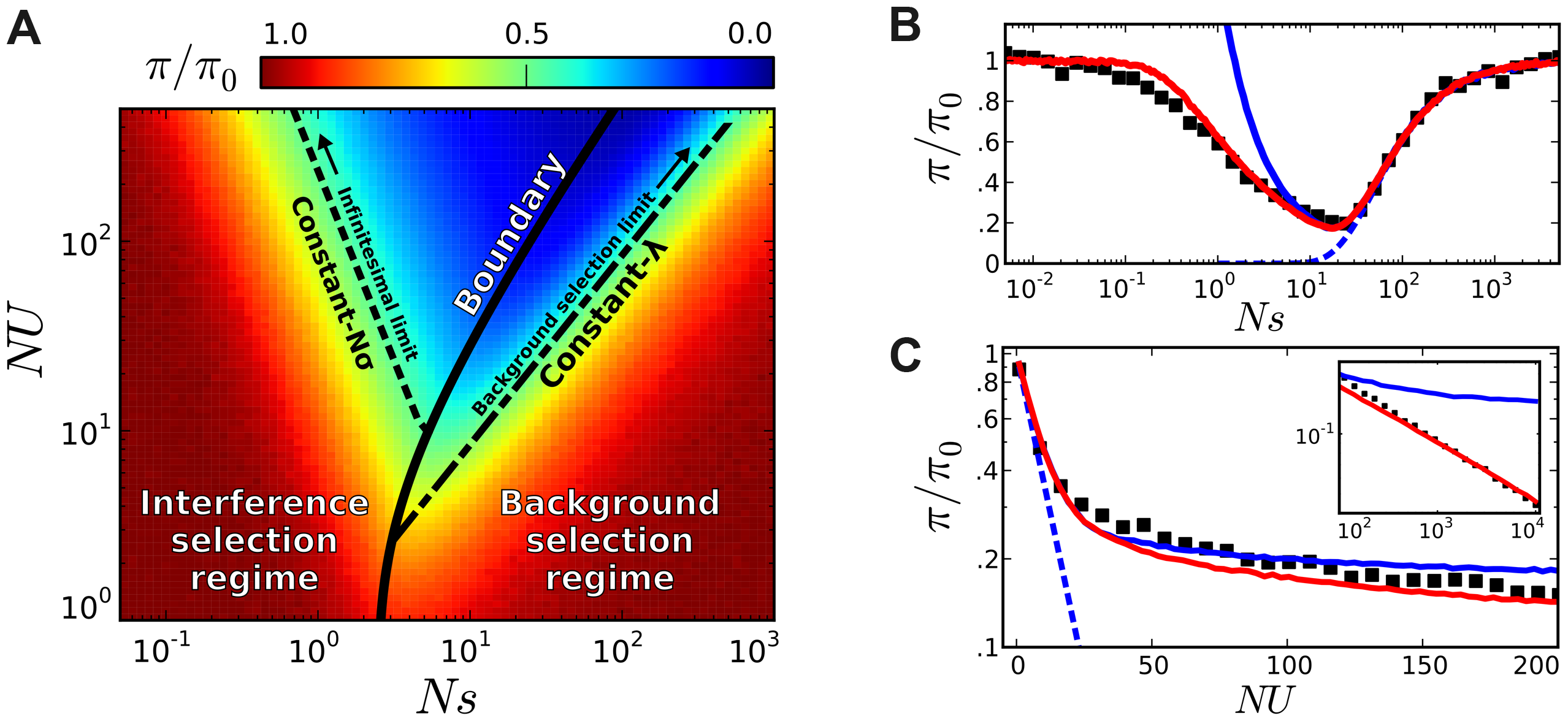 Coarse-grained predictions for the reduction in pairwise diversity.