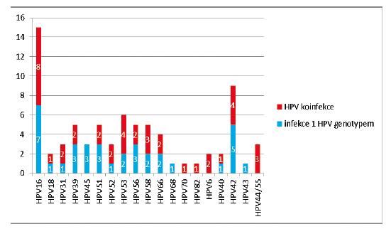 Zastoupení jednotlivých HPV genotypů u 49 HPV pozitivních vzorků (modře – počet případů infekce 1 HPV genotypem, červeně – počet případů HPV koinfekce)