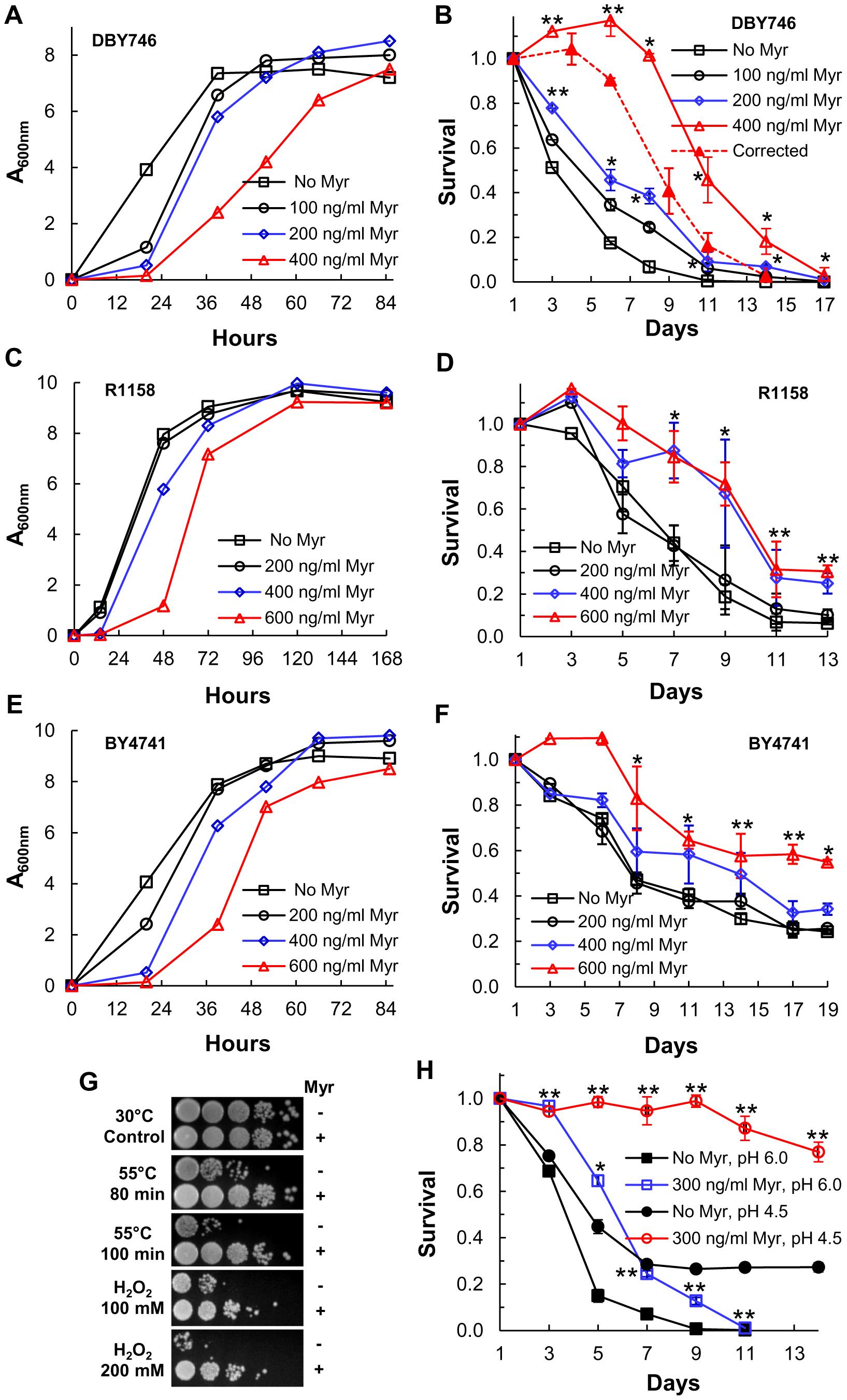Myriocin treatment extends CLS.