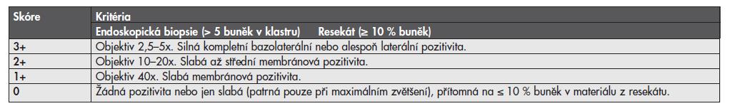 Kritéria pro skórování exprese HER2 v adenokarcinomu žaludku.