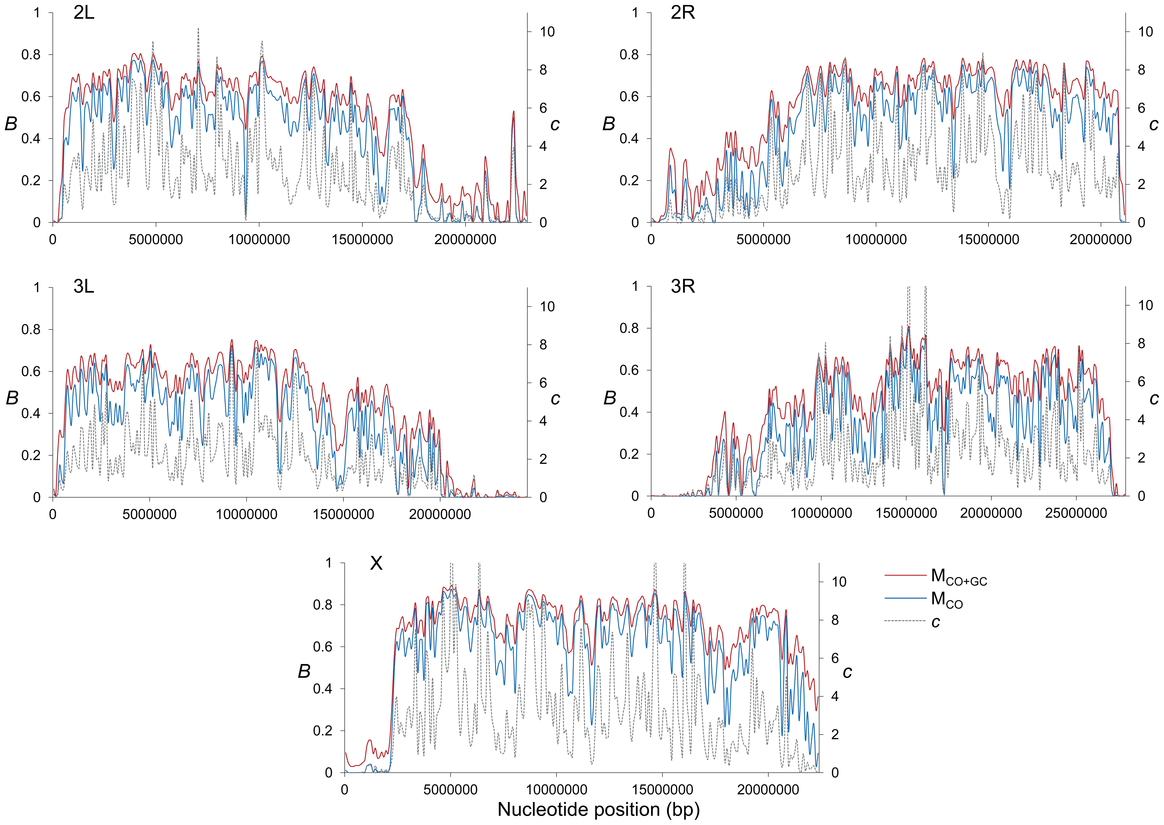 High-resolution distribution of BGS effects across the <i>D. melanogaster</i> genome.