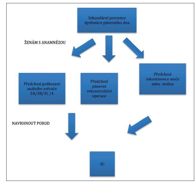 Algoritmus sekundární prevence poškození svalů pánevního dna podle Lavyho [9]