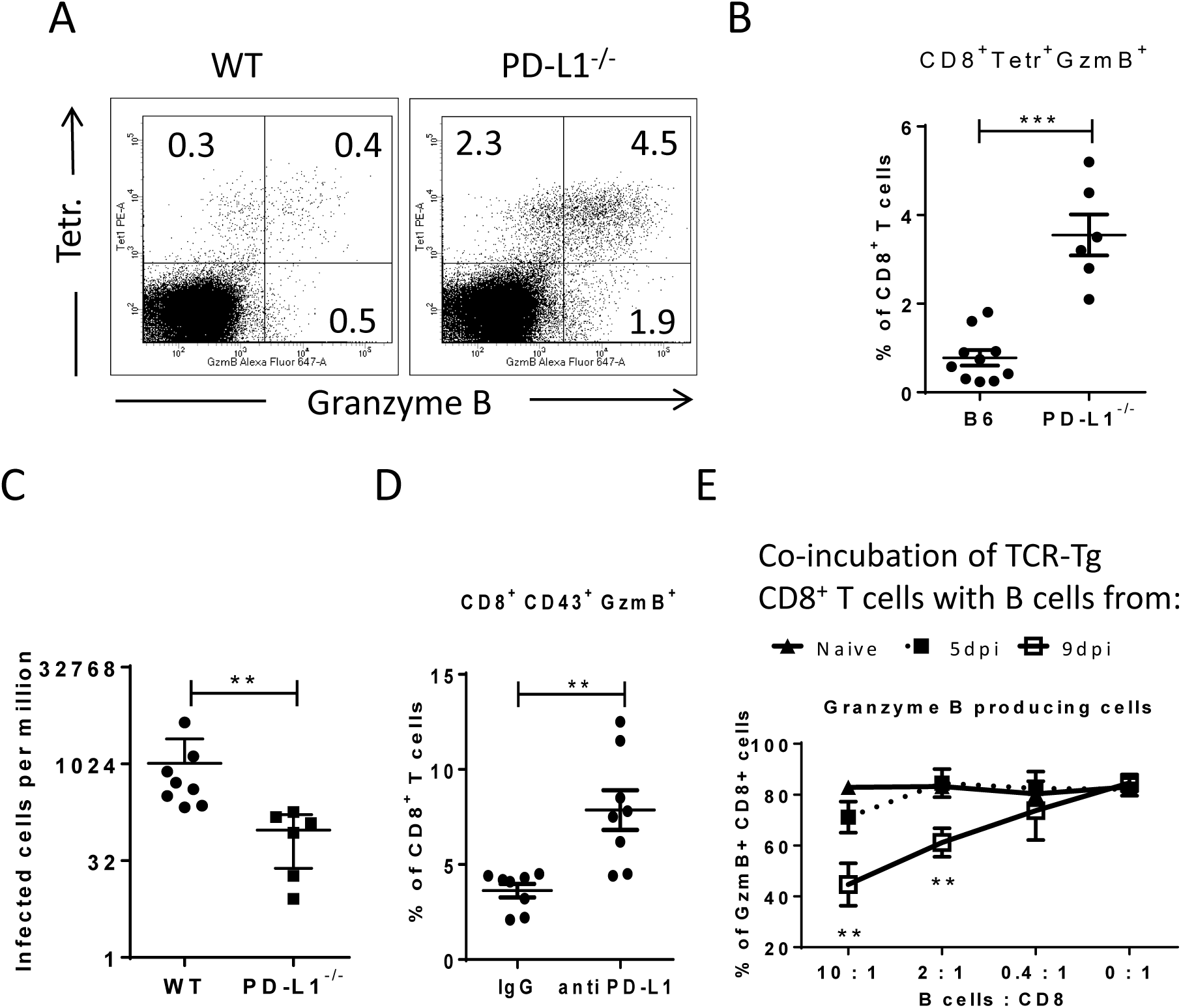 Suppression of CD8<sup>+</sup> T cell function by PD-L1 expressing target cells.