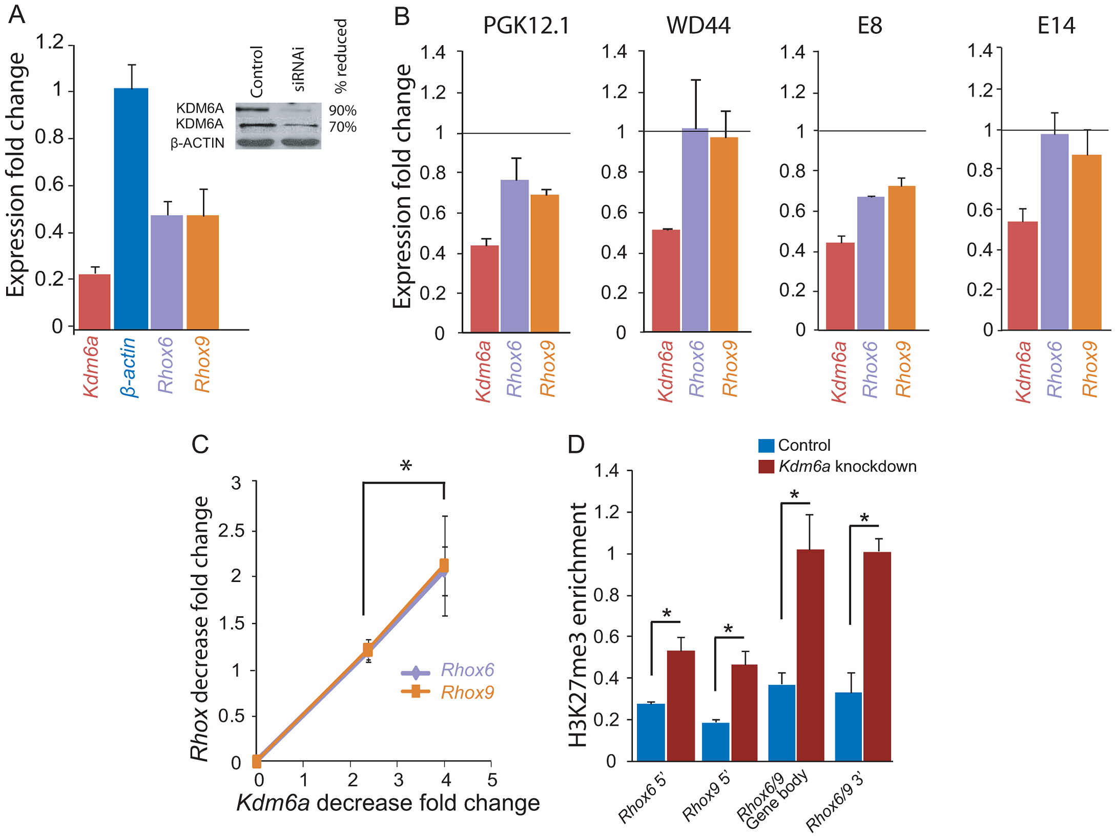 <i>Kdm6a</i> knockdown causes a female-specific decrease in <i>Rhox6</i> and <i>9</i> expression in ES cells.