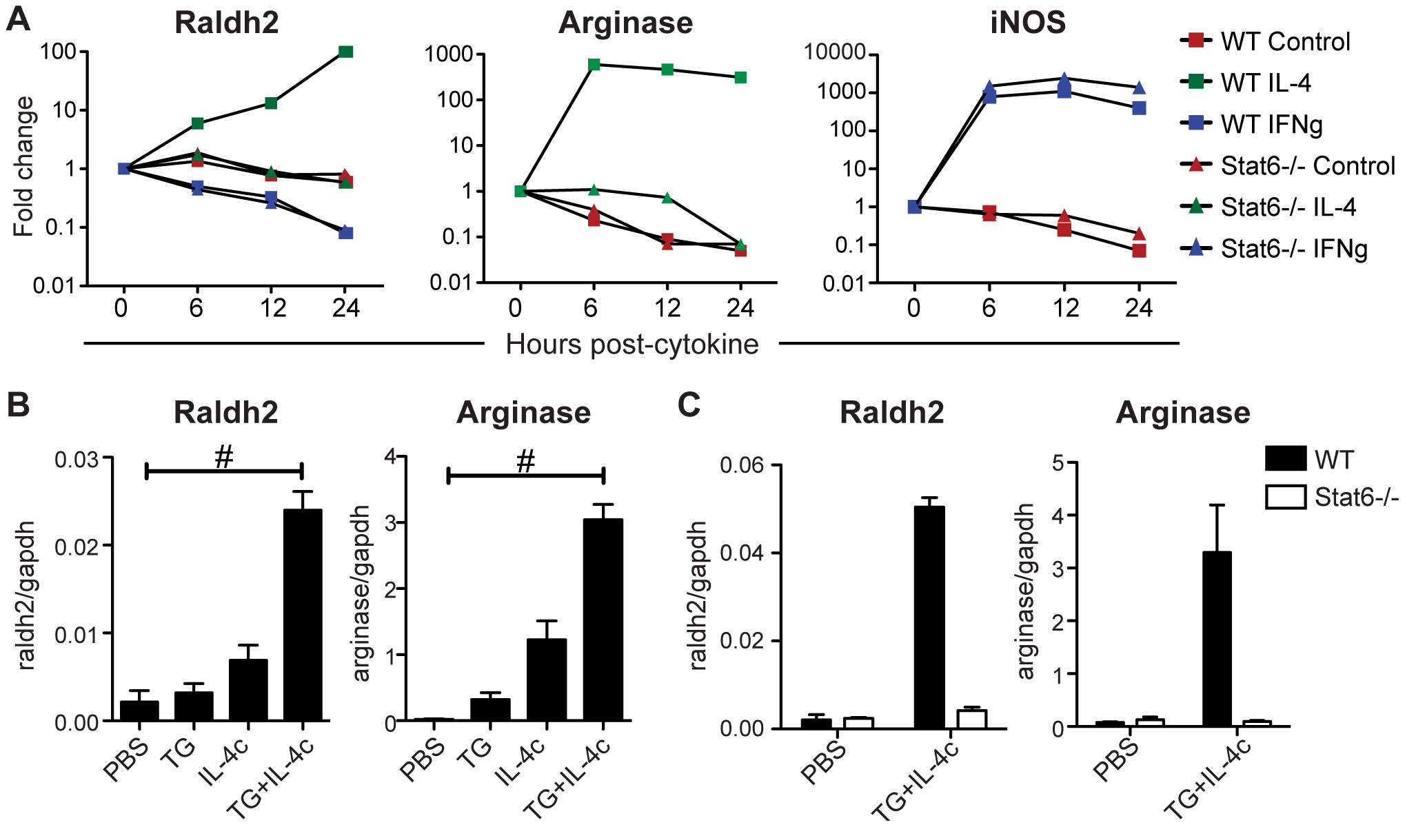 IL-4 induces Stat6-dependent Raldh2 expression in macrophages <i>in vitro</i> and <i>in vivo</i>.