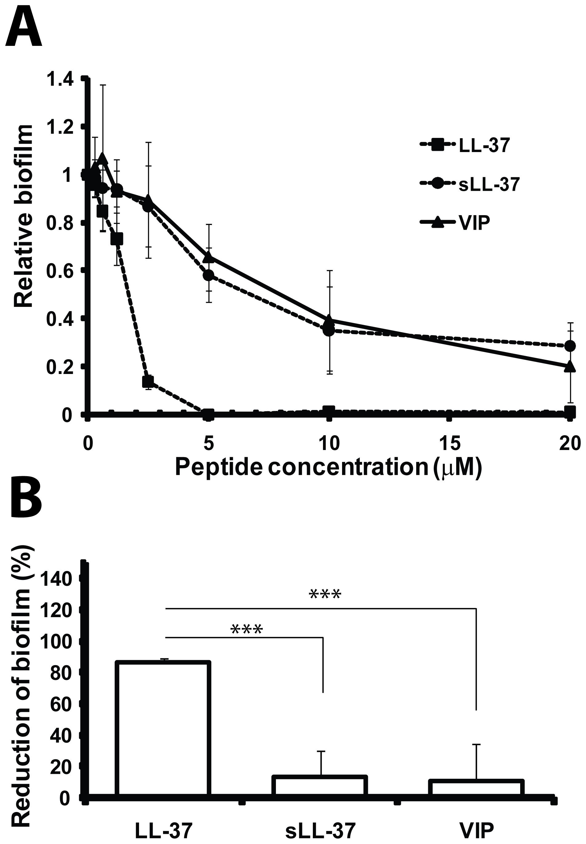 LL-37 prevents formation of biofilm by <i>E. coli</i> in vitro.