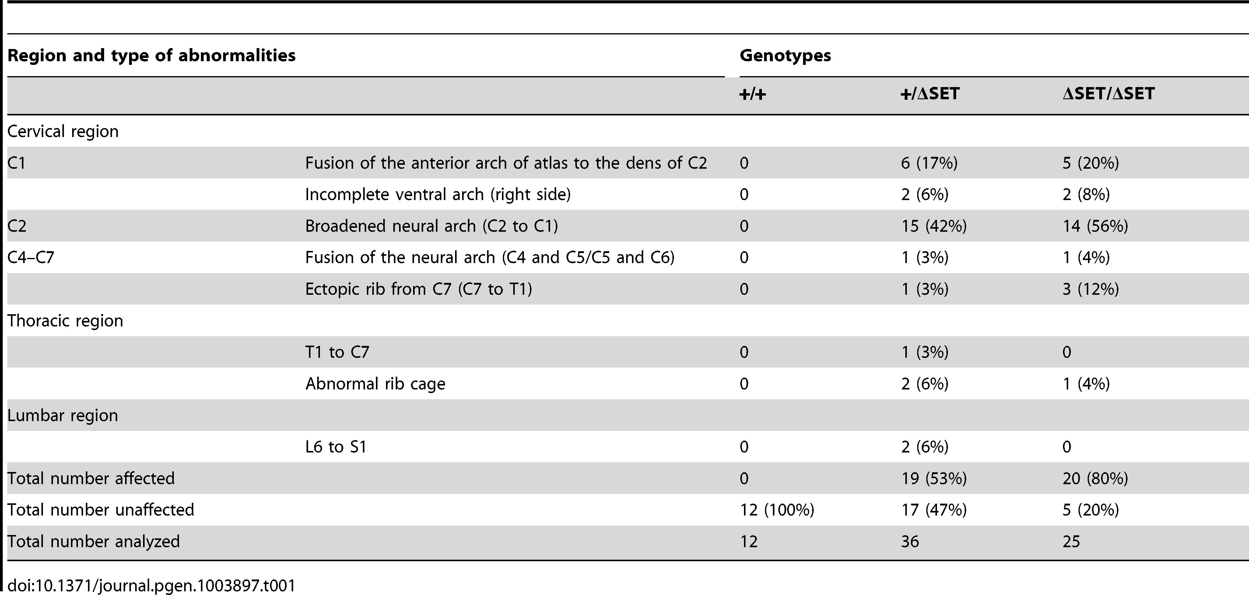 Skeletal phenotypes observed in progenies by intercrossing of heterozygotes.