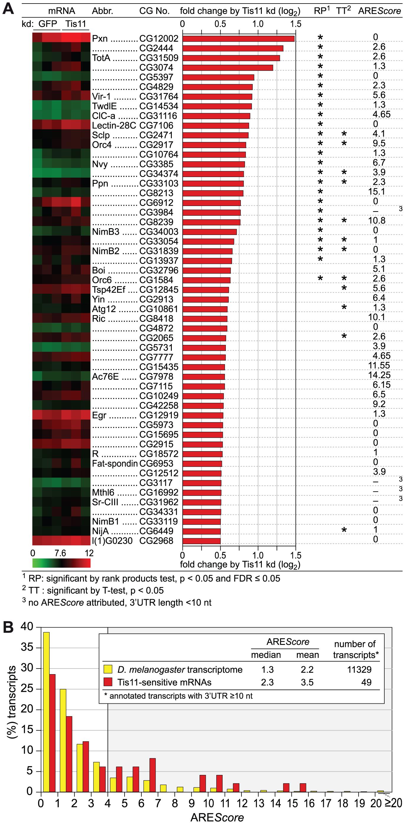 Analysis of Tis11-sensitive mRNAs in <i>D. melanogaster</i> SL2 cells.