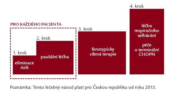 Doporučený postup České pneumologické a ftizeologické společnosti publikovaný v roce 2013 – základní schéma terapie (tiotropium je obsaženo v paušální léčbě indikované pro všechny symptomatické osoby) [16].