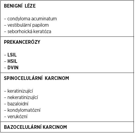 Epiteliální léze vulvy (WHO 2014)