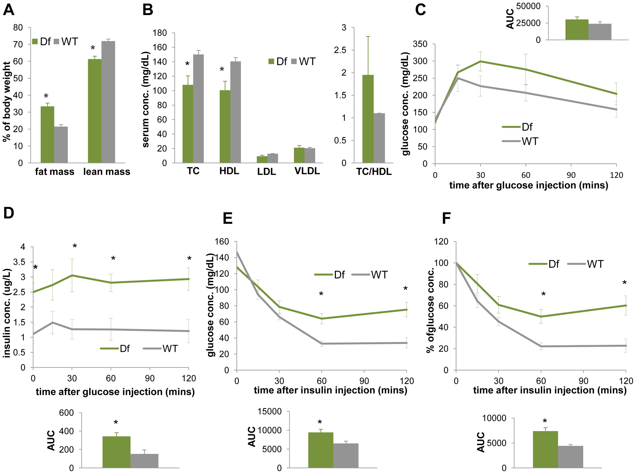 <i>Df(11)17/+</i> mice (green) are obese, have reduced TC, HDL, and display reduced insulin sensitivity in comparison to WT mice (gray).