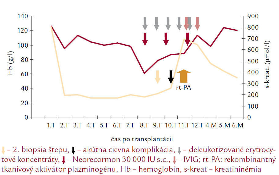 Vývoj funkcie štepu a hemoglobínu v závislosti od liečebnej intervencie u pacienta s parvovírusovou infekciou.
