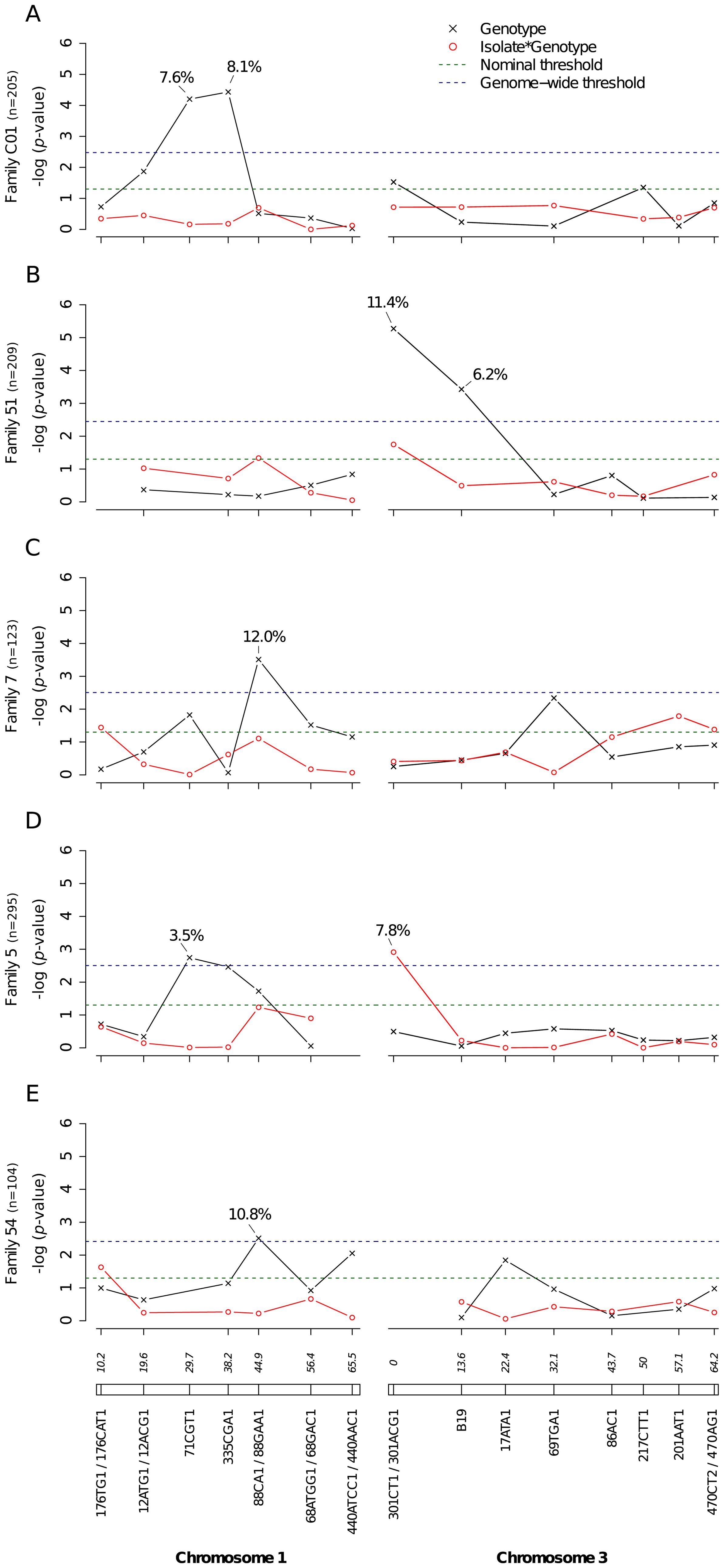 Genetic survey of <i>Ae. aegypti</i> loci associated with midgut infection.