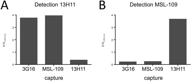 HCMV gH/gL antibody binding competition.