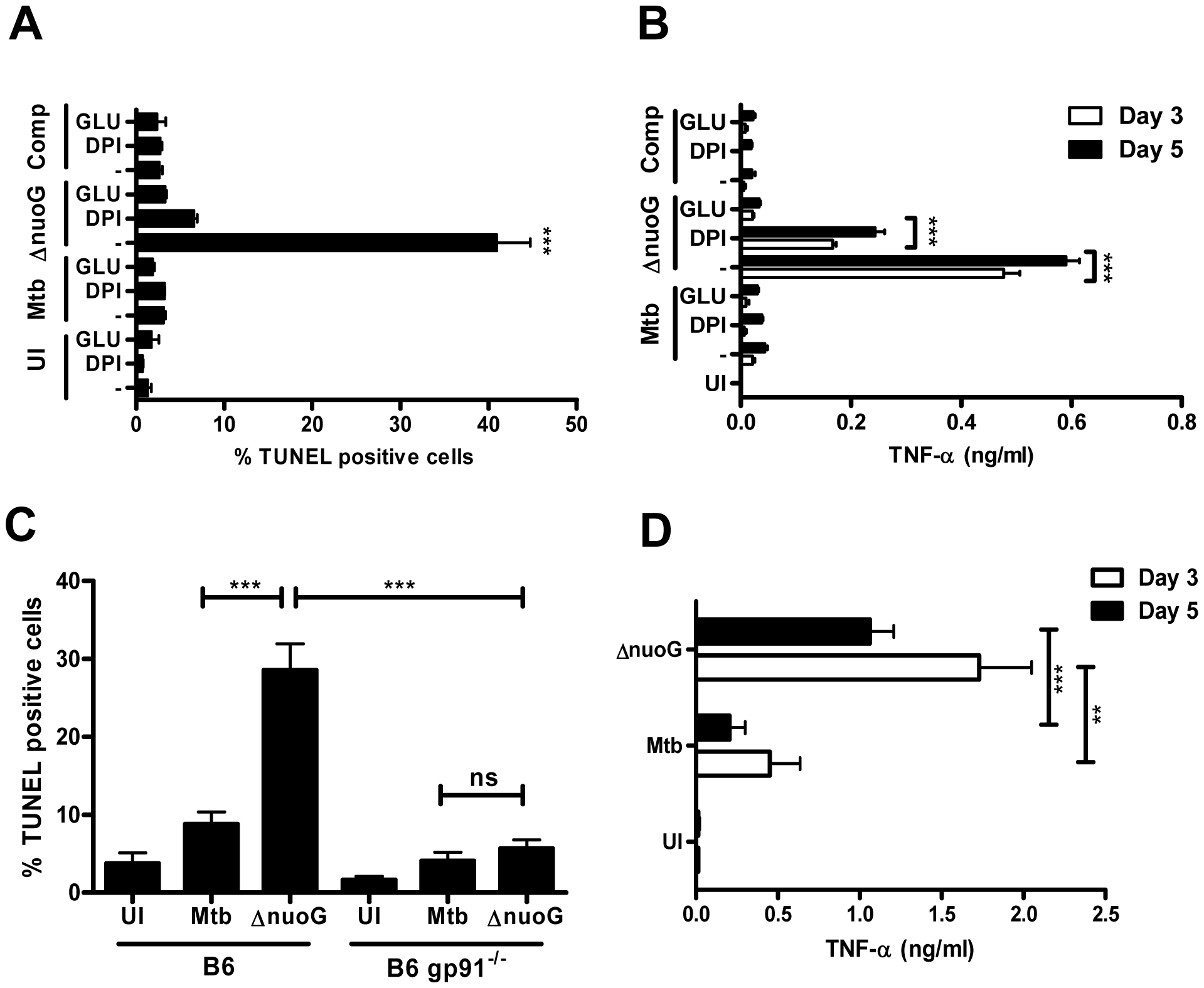 Mtb NuoG mediates inhibition of ROS-dependent induction of apoptosis.