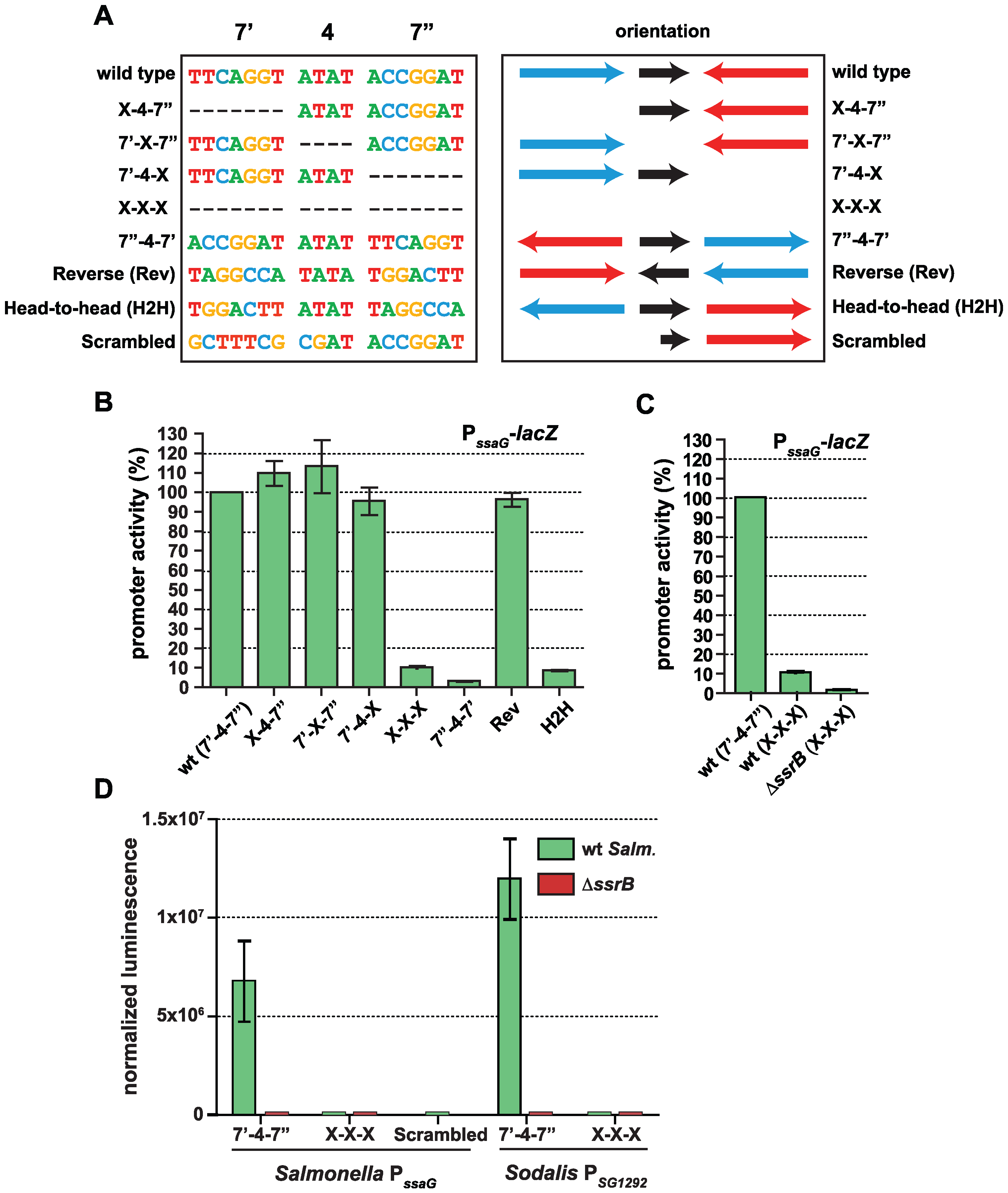 The SsrB binding motif architecture is flexible and conserved in <i>Sodalis</i>.