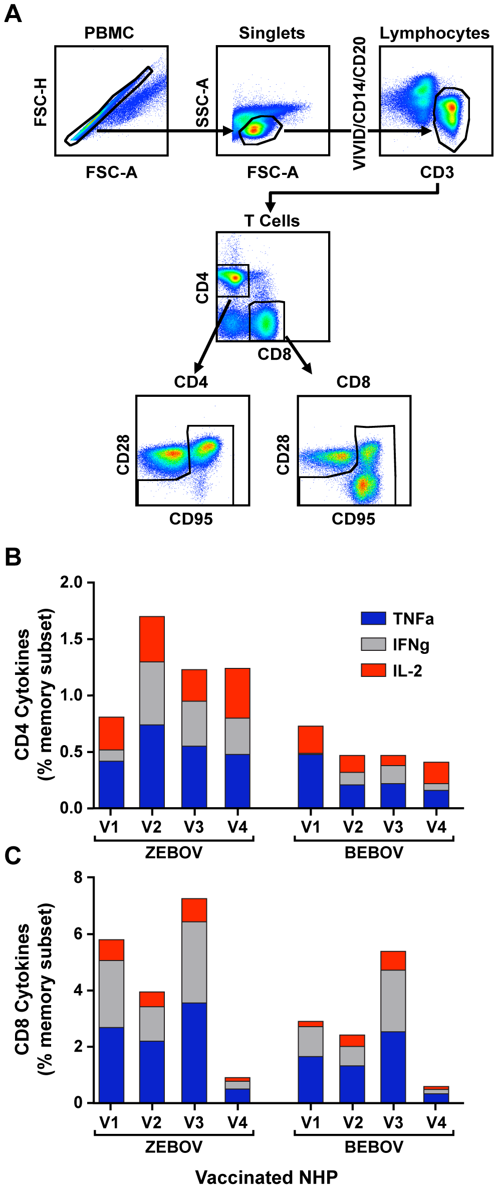 T-cell immune responses measured by intracellular cytokine staining.
