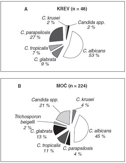 A, B. Zastoupení jednotlivých druhů kandid v hemokultuře (n = 48) a v moči (n = 224), podle [55]