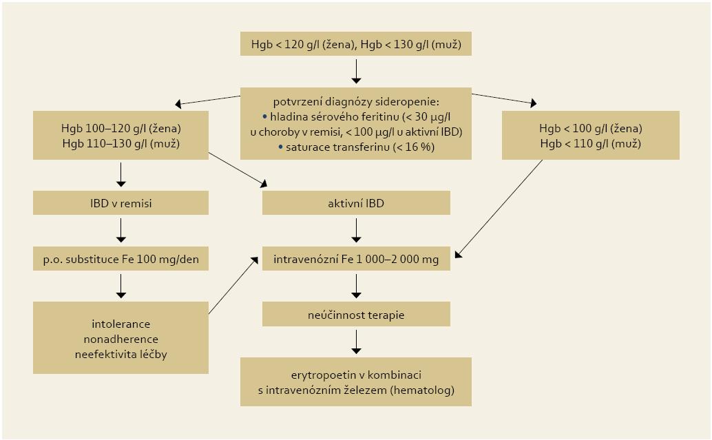 Doporučení pro substituční léčbu sideropenní anémie u IBD pacentů. Fig. 2. Recommendation for iron supplementation in IBD patients with iron deficiency anaemia.