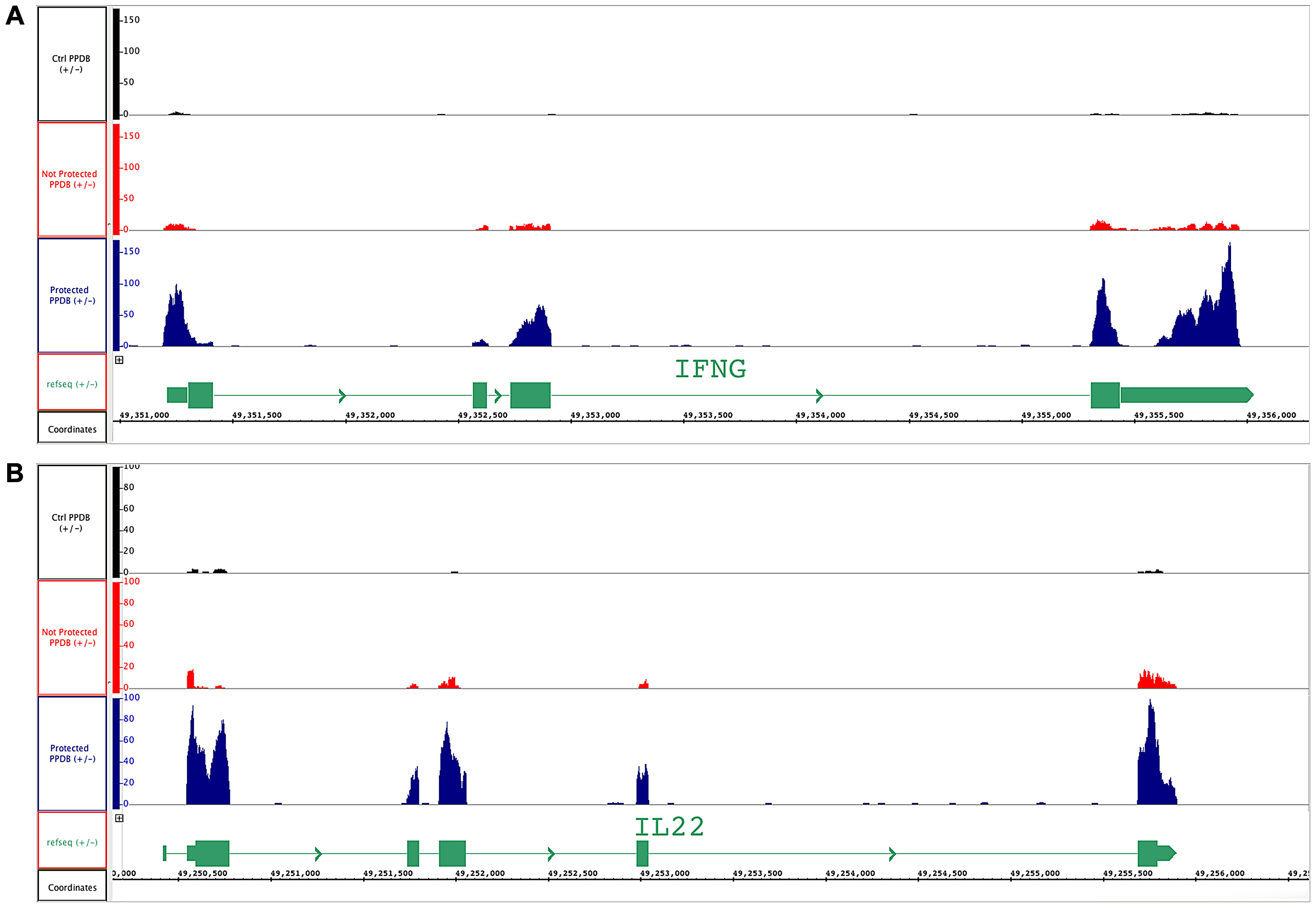 BCG-vaccinated and control cattle samples mapped to <i>ifn-γ</i> and <i>il-22</i> genes.