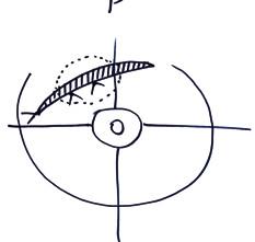 Schematický nákres do histologické žádanky