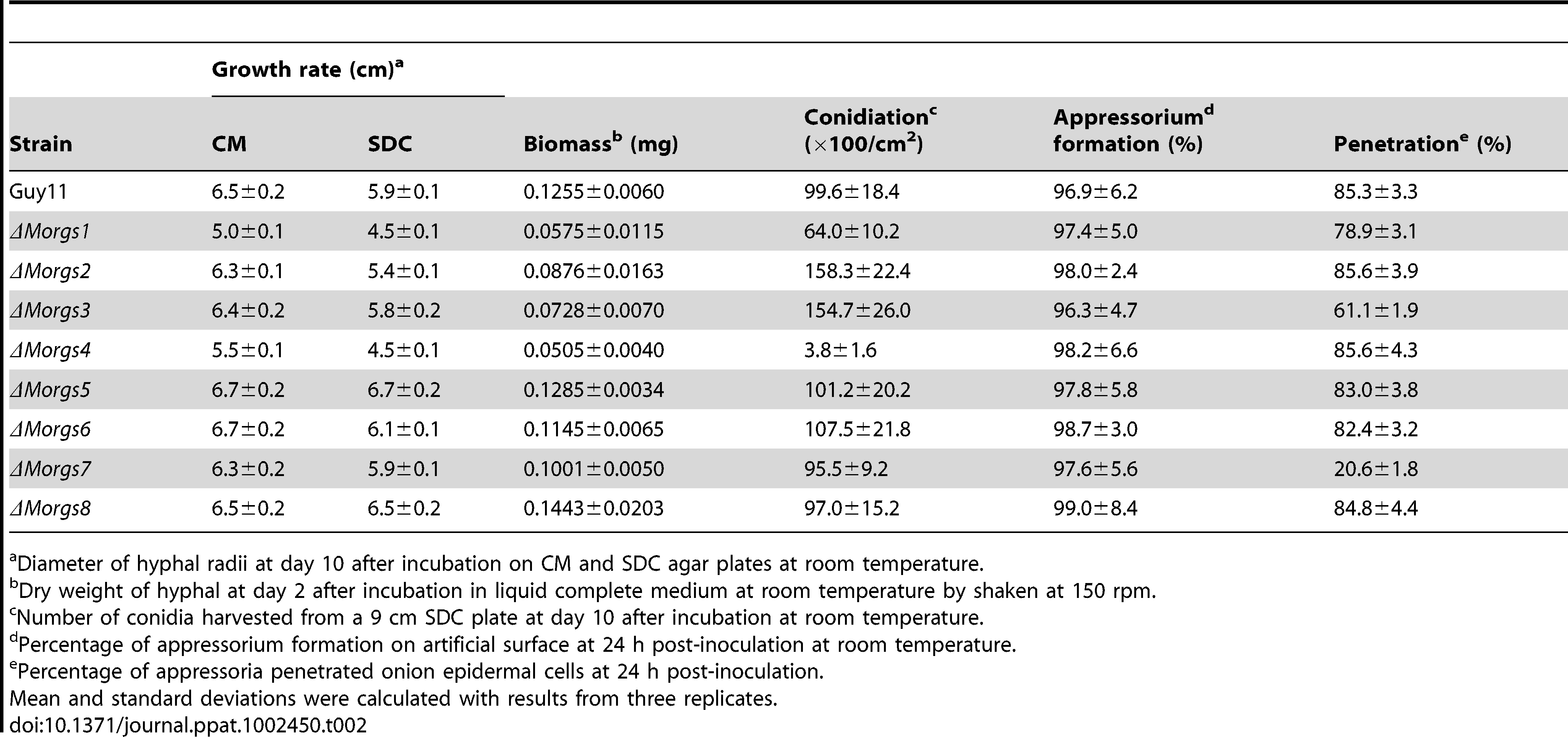 Comparison of mycological characteristics among strains.