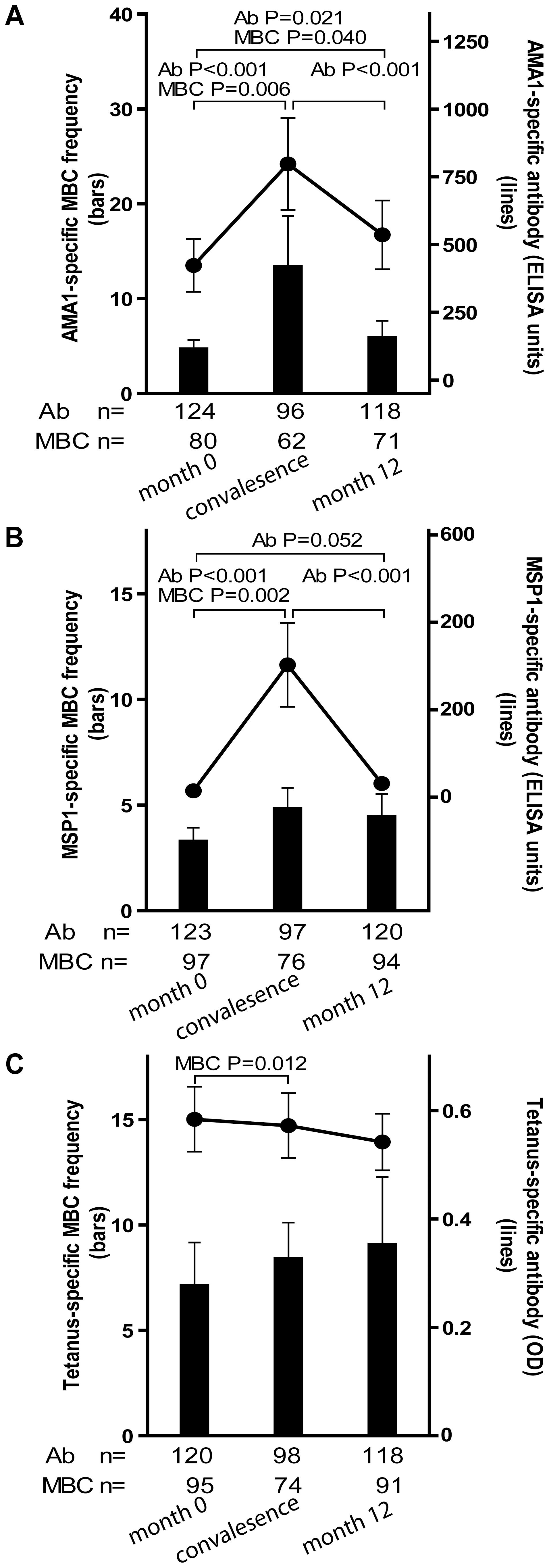 Longitudinal analysis of the <i>Pf</i>- and TT-specific MBC and antibody response.