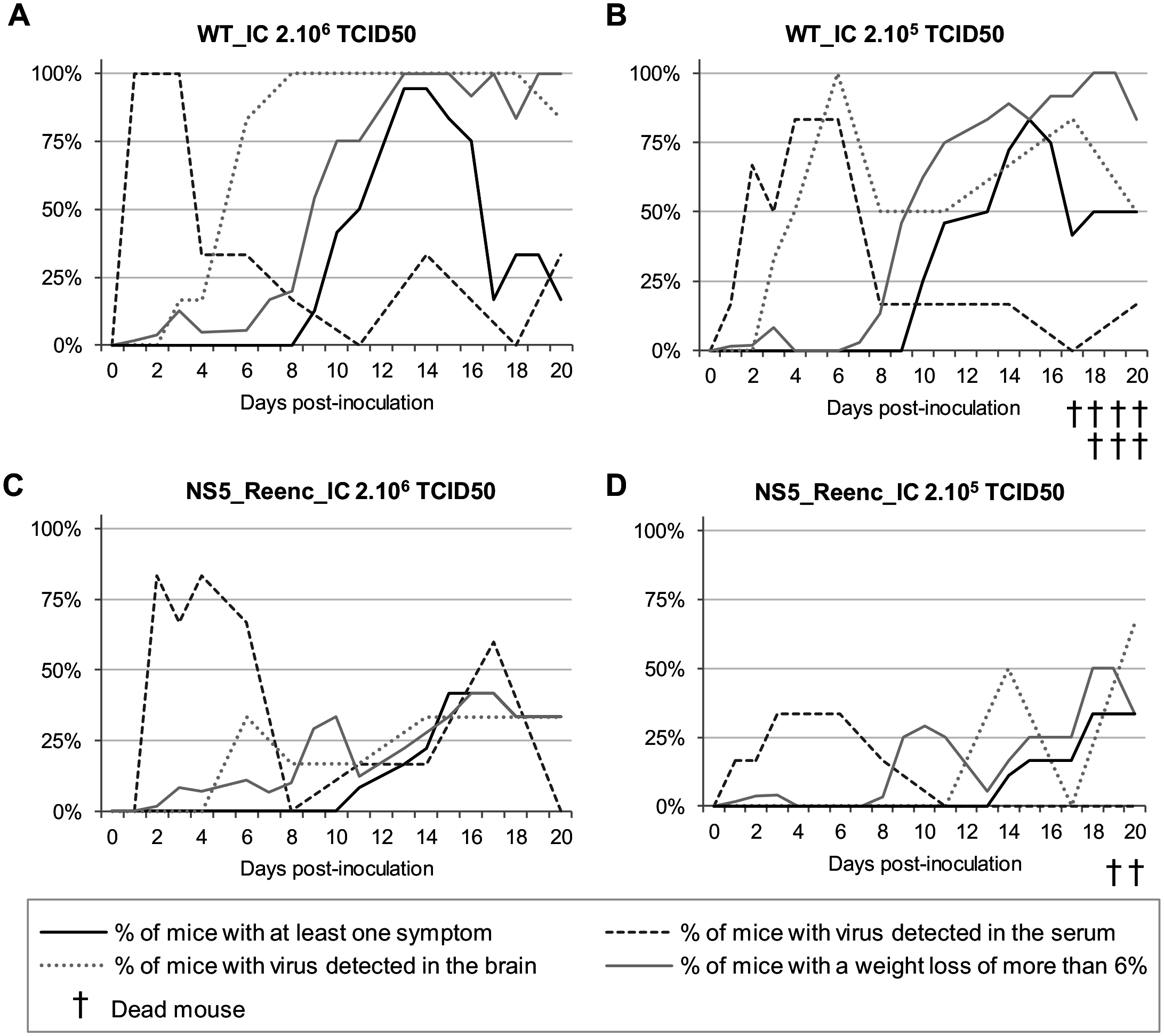 Time distribution of the proportion of mice with at least one symptom, with a weight loss of more than 6% and with virus detected in the serum or in the brain by qRT-PCR.