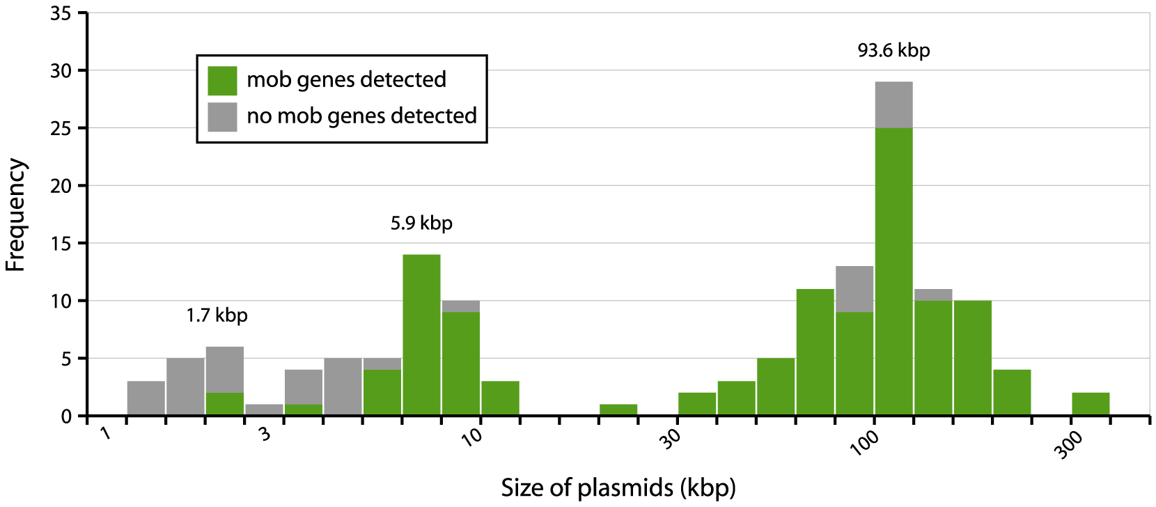 Distribution of plasmid sizes in the collection of 32 sequenced <i>E. coli</i> strains.