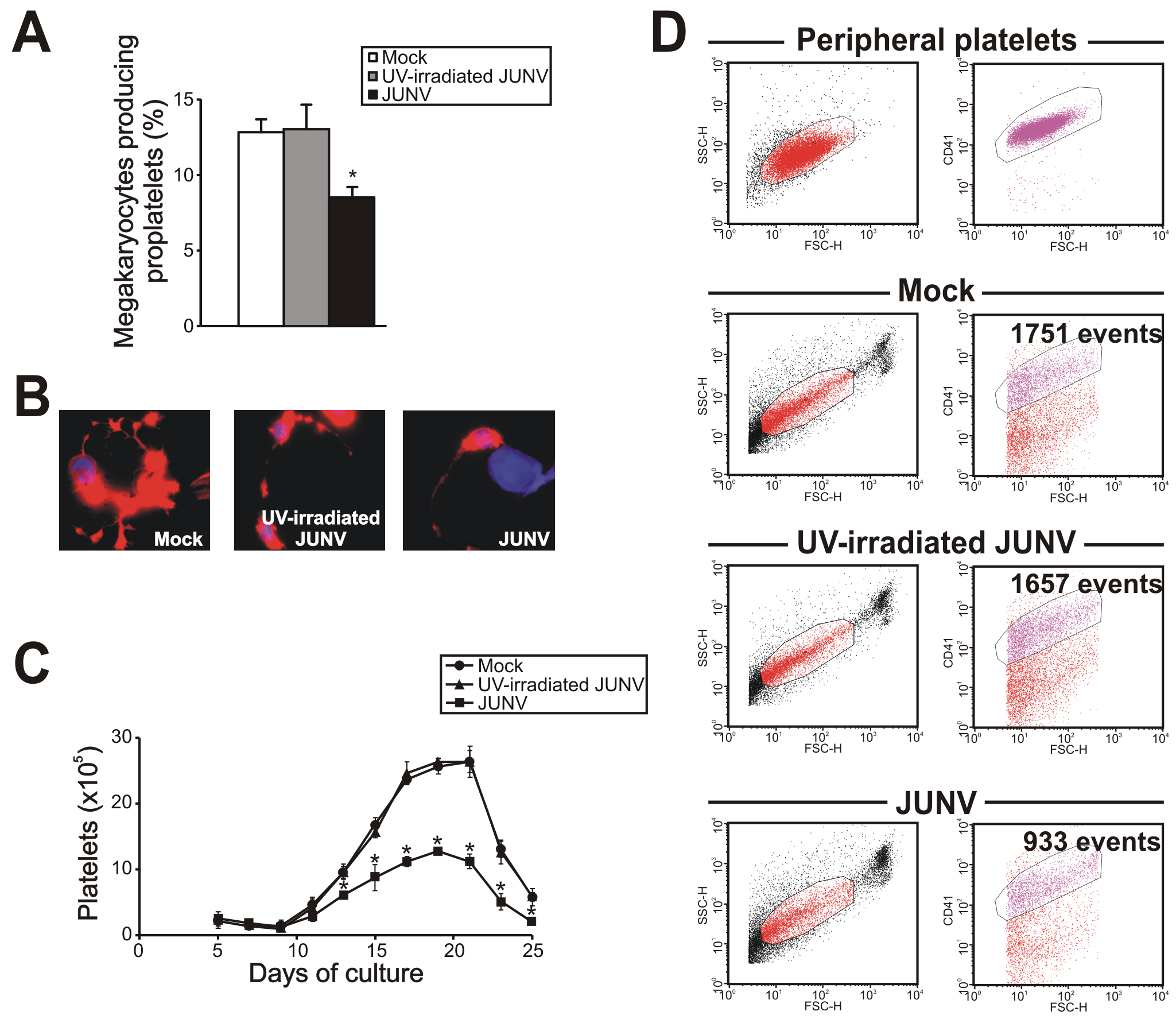 JUNV infection impairs proplatelet production and platelet release.