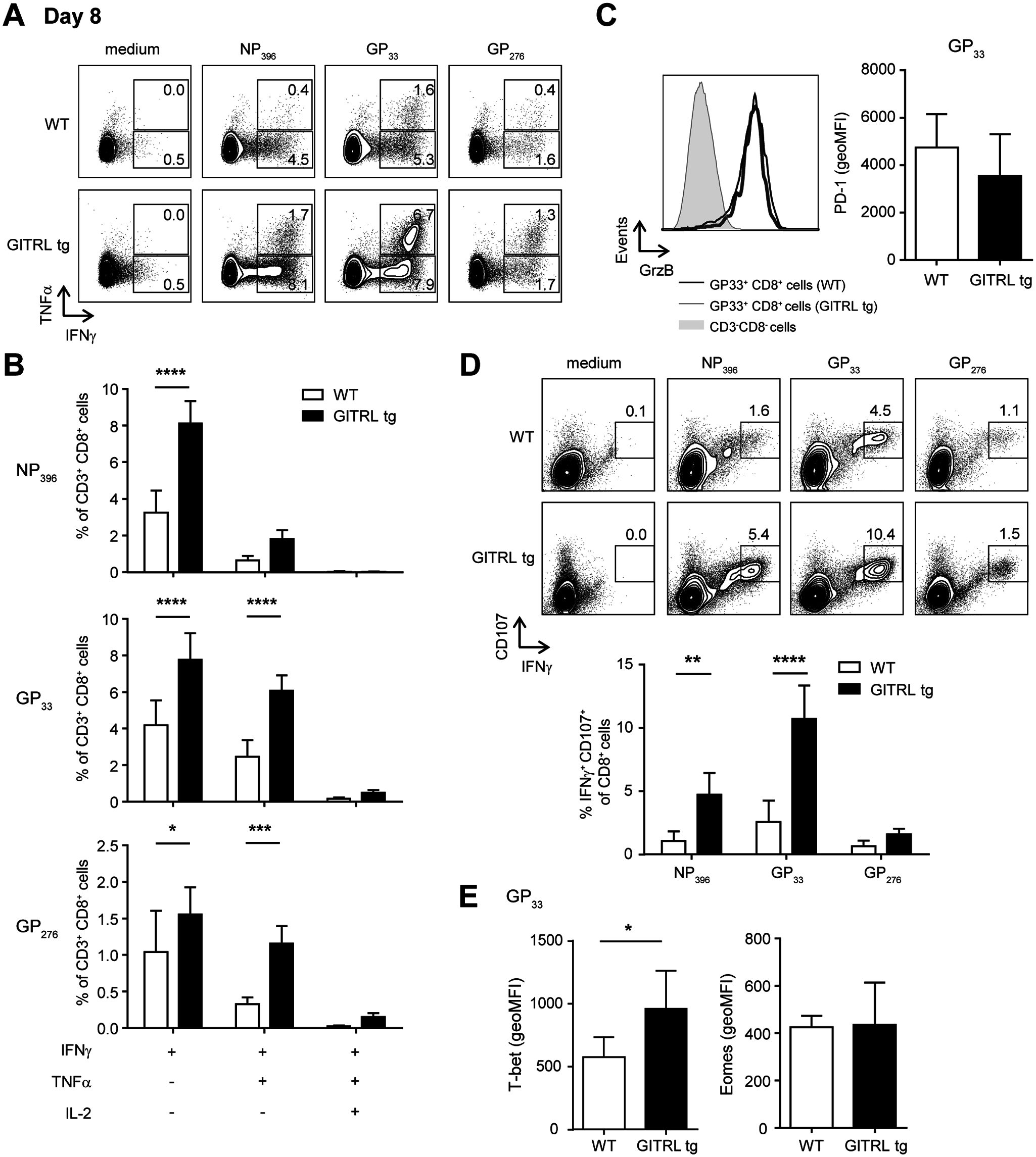 Virus-specific CD8<sup>+</sup> T cells are more polyfunctional in GITRL tg mice.