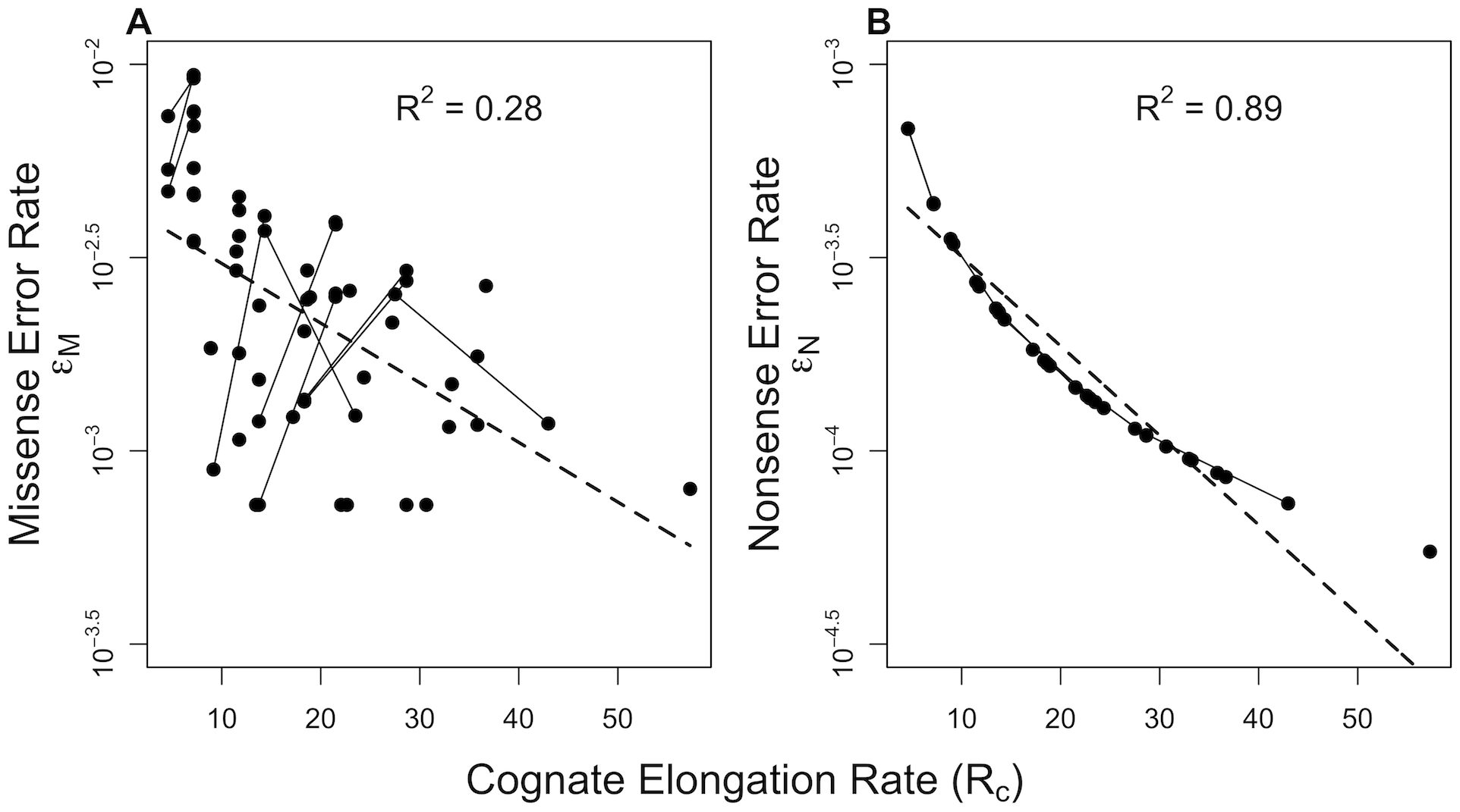 Correlation of translation error rates  with cognate elongation rate  in <i>E. coli</i>.
