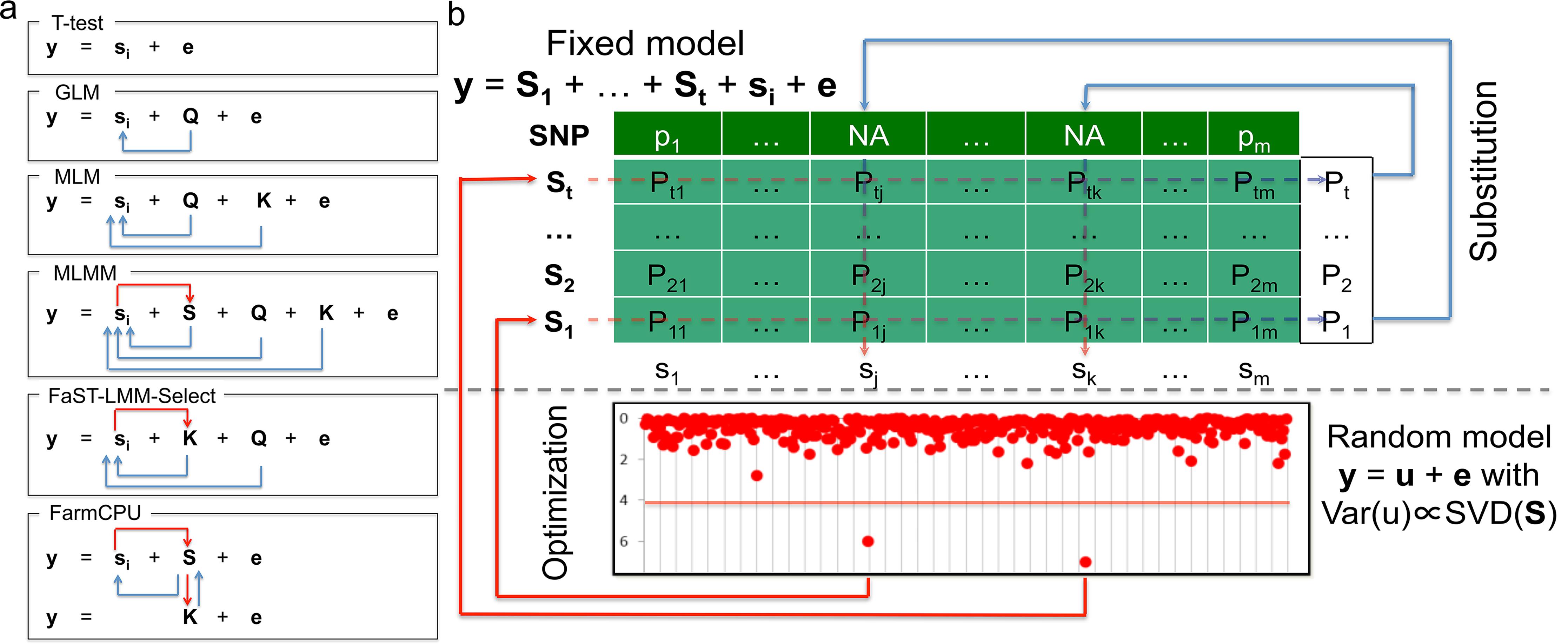 Conceptual development and procedure of FarmCPU.