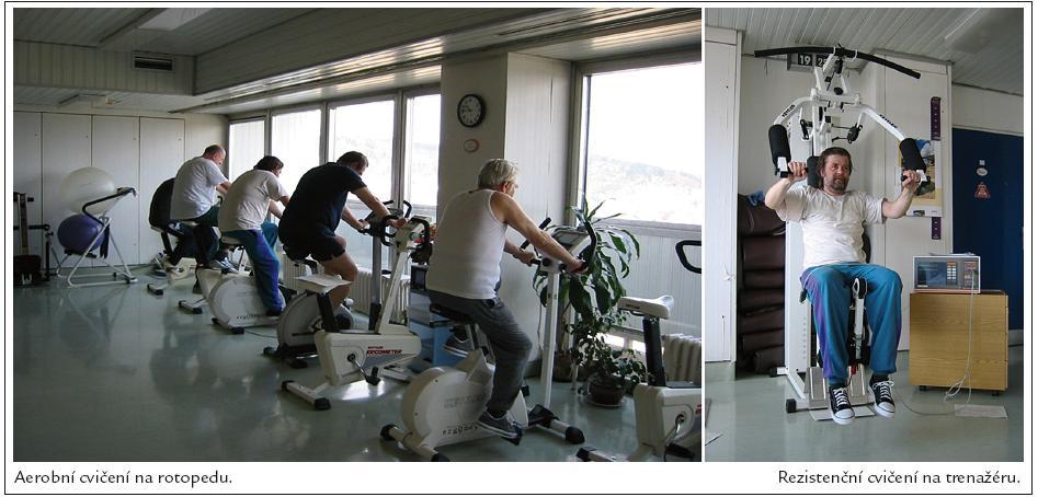 Typy cvičení.