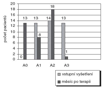 Vyhodnocení anamnestického indexu.