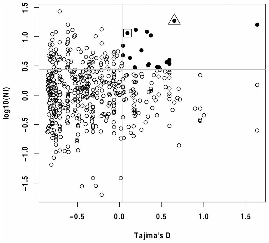 Tajima's D and MK test NI values for <i>P. falciparum</i> genes.
